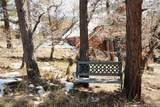 11911 Antler Trail - Photo 34