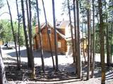 1551 Pisgah Lake Road - Photo 1