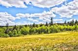 1060 Pinto Trail - Photo 23