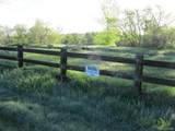 17497 Nature Walk Trail - Photo 28