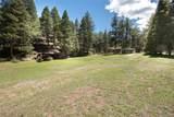 24092 Resort Creek Road - Photo 12