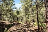24092 Resort Creek Road - Photo 31