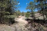 24092 Resort Creek Road - Photo 4