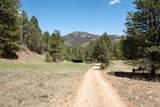 24092 Resort Creek Road - Photo 6