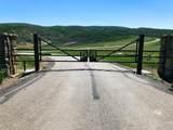 37125 Aspen Bluff Terrace - Photo 13