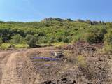 37125 Aspen Bluff Terrace - Photo 4