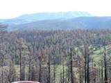 453 Wagon Mesa Loop - Photo 13
