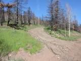 453 Wagon Mesa Loop - Photo 6