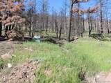 453 Wagon Mesa Loop - Photo 7