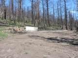 453 Wagon Mesa Loop - Photo 9