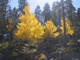30178 Mountaintop Drive - Photo 11