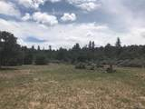 6284 Mesa Vista Park - Photo 11