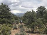 6284 Mesa Vista Park - Photo 12