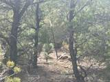 6284 Mesa Vista Park - Photo 13