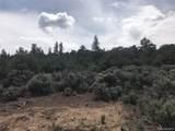 6284 Mesa Vista Park - Photo 14
