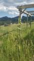 11926 Ranch Elsie Road - Photo 37