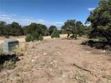4232 Camino Baca Grande - Photo 7