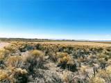 700 Pine Cone Road - Photo 9