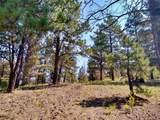 638 Bison Creek Trail - Photo 11
