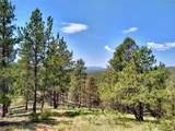 638 Bison Creek Trail - Photo 12