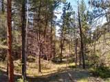 638 Bison Creek Trail - Photo 13