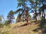638 Bison Creek Trail - Photo 14
