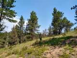 638 Bison Creek Trail - Photo 17