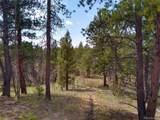 638 Bison Creek Trail - Photo 18