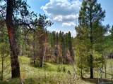 638 Bison Creek Trail - Photo 19
