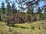638 Bison Creek Trail - Photo 2