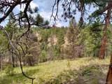 638 Bison Creek Trail - Photo 20