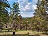 638 Bison Creek Trail - Photo 21