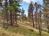 638 Bison Creek Trail - Photo 22