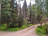 638 Bison Creek Trail - Photo 23