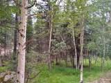 638 Bison Creek Trail - Photo 24
