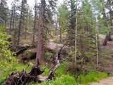 638 Bison Creek Trail - Photo 26