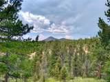 638 Bison Creek Trail - Photo 3