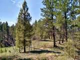 638 Bison Creek Trail - Photo 4