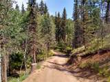 638 Bison Creek Trail - Photo 5