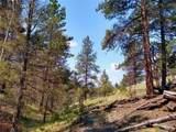 638 Bison Creek Trail - Photo 6