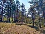 638 Bison Creek Trail - Photo 7
