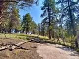 638 Bison Creek Trail - Photo 8