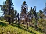 638 Bison Creek Trail - Photo 9