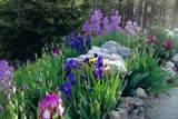 6138 Sunshine Canyon Drive - Photo 7