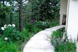 6138 Sunshine Canyon Drive - Photo 8