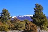 000 Big Buck Trail - Photo 12