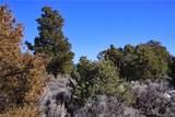 000 Big Buck Trail - Photo 13