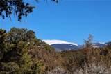 000 Big Buck Trail - Photo 21
