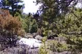 000 Big Buck Trail - Photo 22