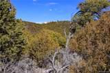 000 Big Buck Trail - Photo 23